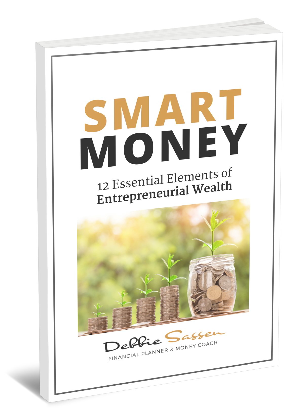 Smart Money: 12 Essential Elements of Entrepreneurial Wealth eBook by Debbie Sassen
