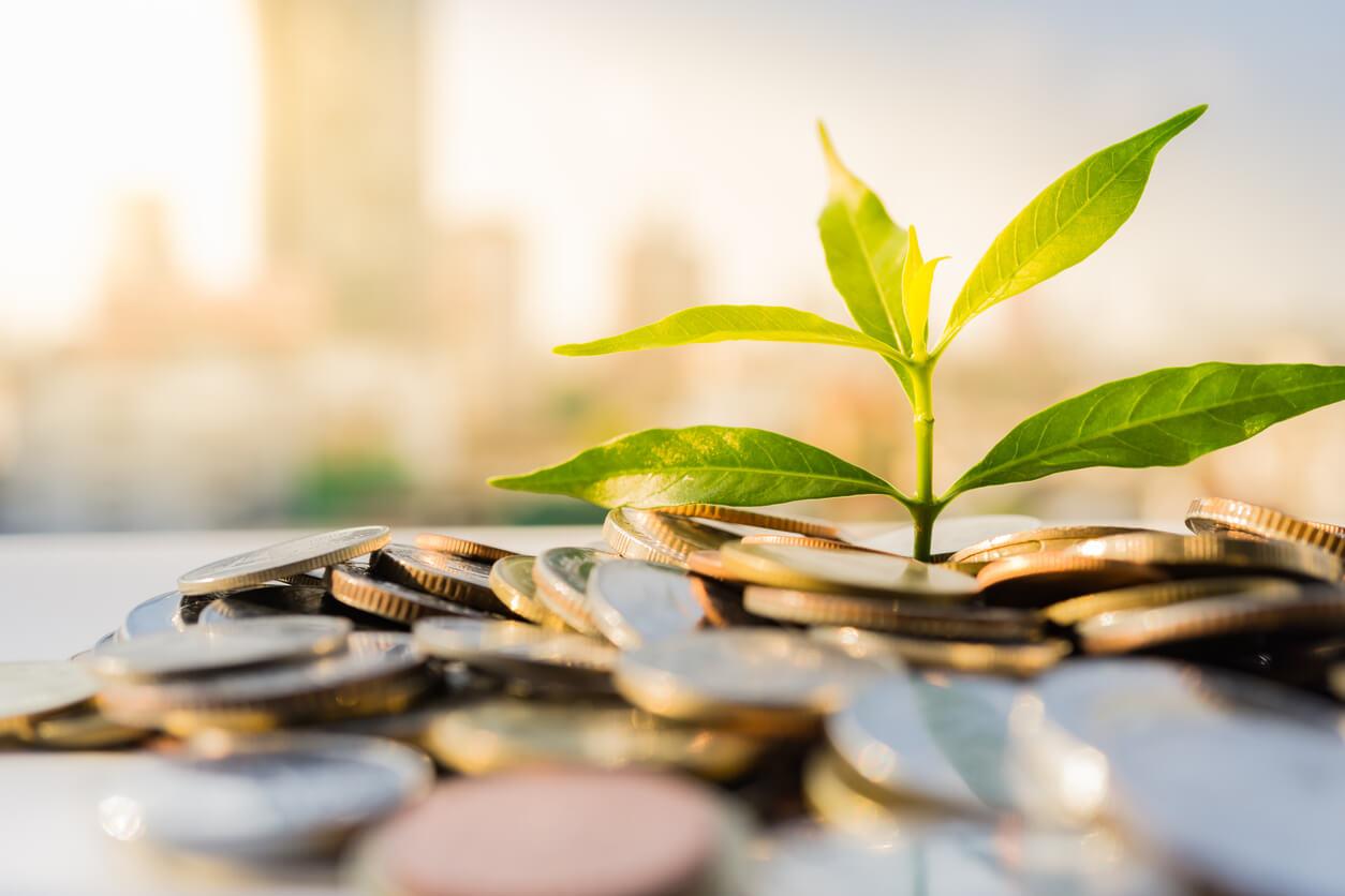 passive versus active investing